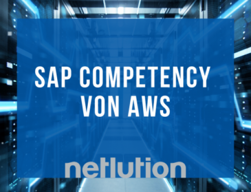 "n_value group: ""SAP Competency"" an Netlution verliehen!"